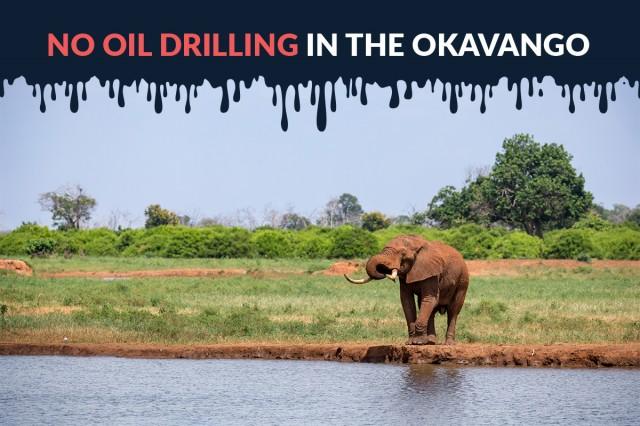 No-Oil-Drilling-in-the-Okavango